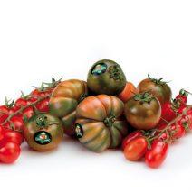 Il pomodoro di Pachino Igp fa la storia